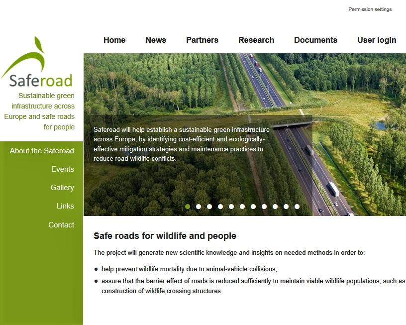 SafeRoad project