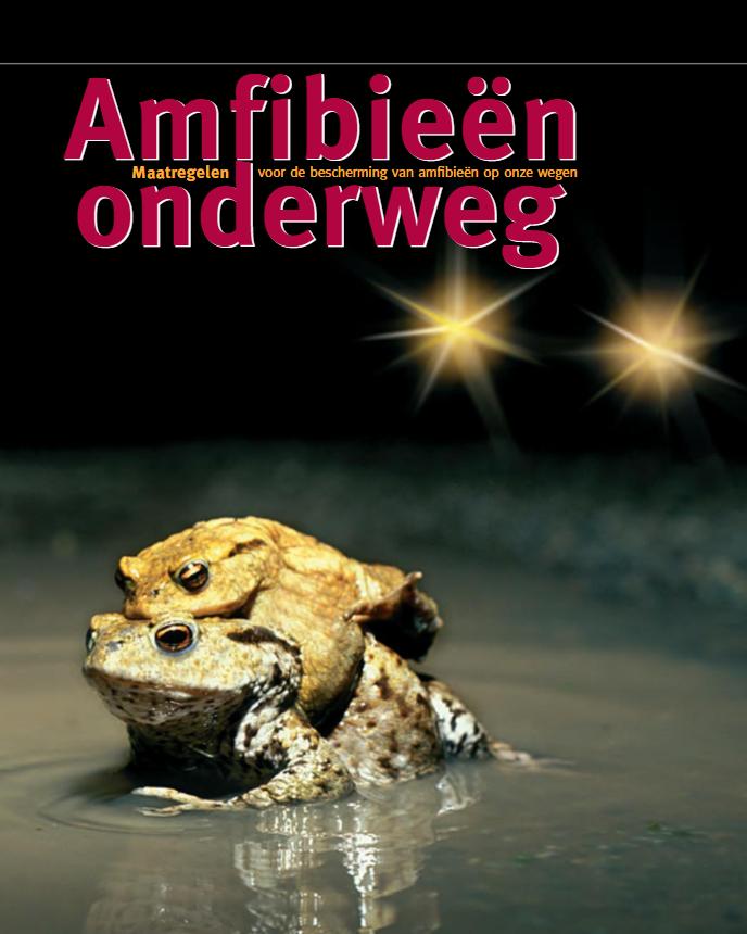 Amfibieën onderweg. Flemish government