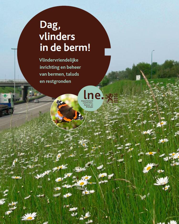 Dag, vlinders in de berm!. Flemish government