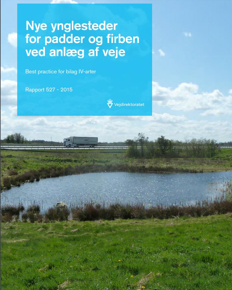 Nye ynglesteder for padder og firben ved anlæg af veje. The Danish Road Directorate
