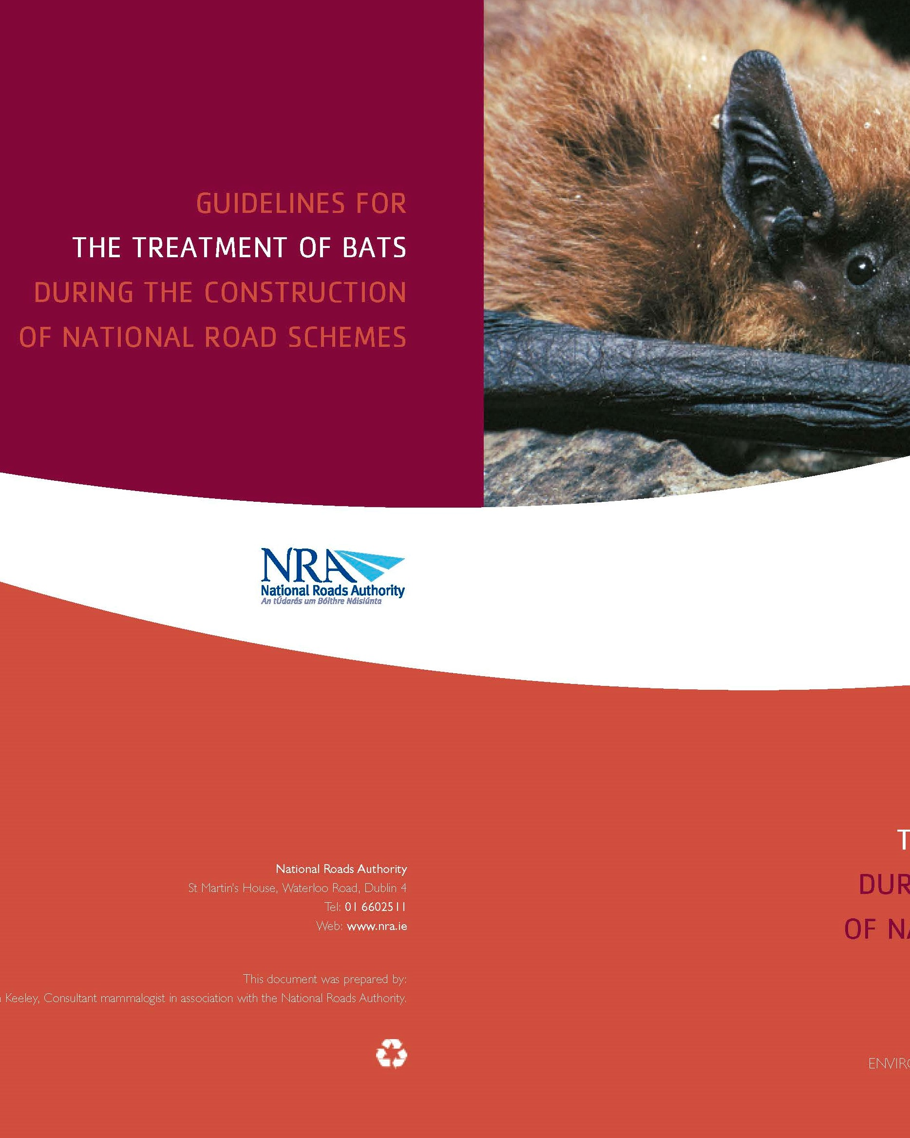 Guidelines for the Treatment of Bats during the Construction of National Road Schemes. National Roads Authority (NRA)