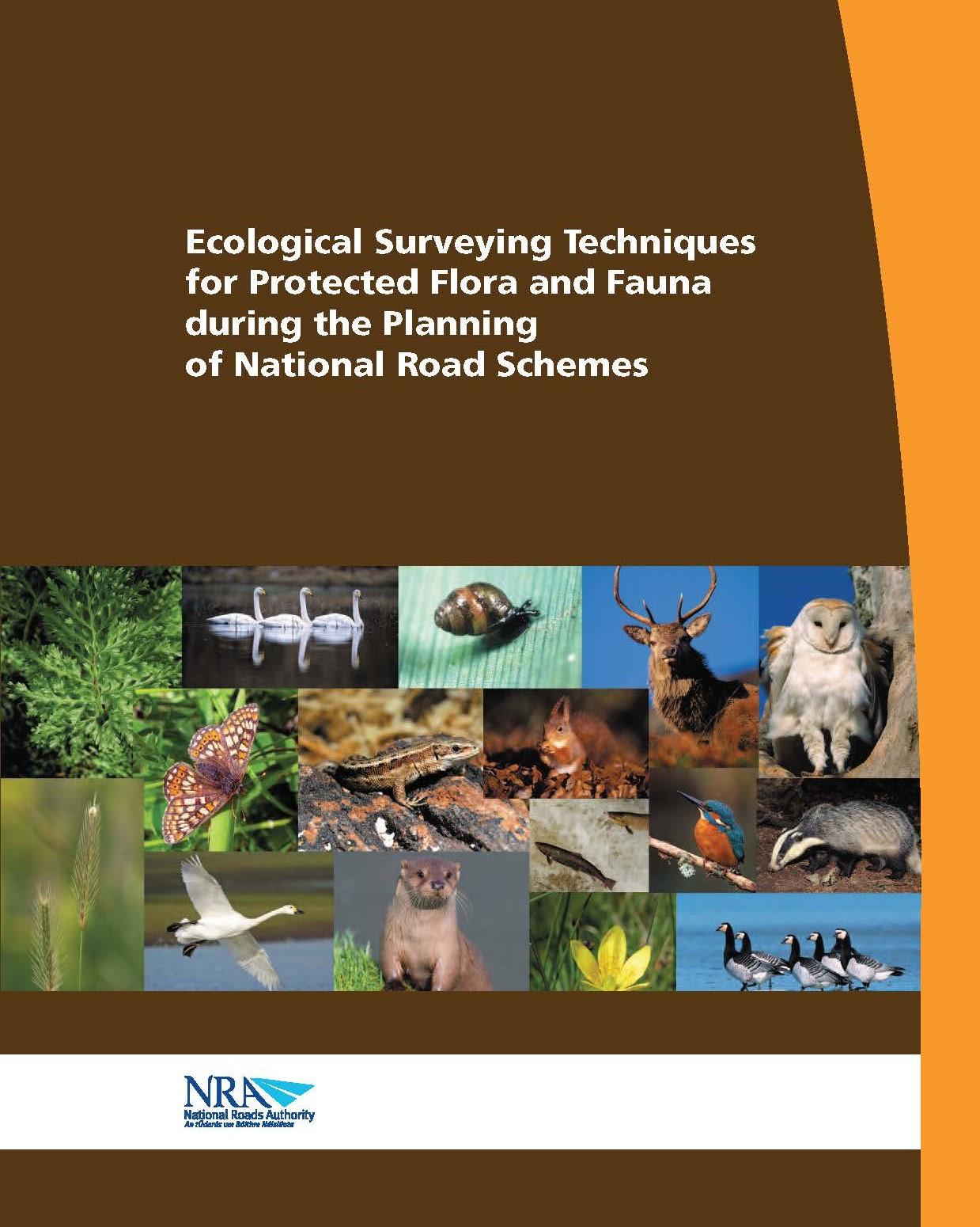 Ecological Surveying Techniques for Protected Flora and Fauna during the Planning of National Road Schemes. National Roads Authority (NRA)