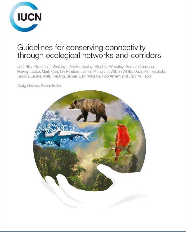 Guidelines for conserving connectivity through ecological networks and corridors